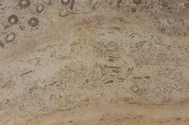 Delphi ÜL C120 gespachtelt & geschliffen