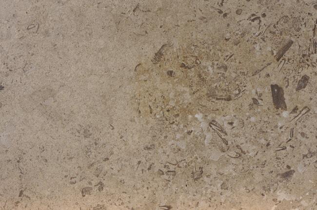 Delphi C120 gespachtelt & geschliffen