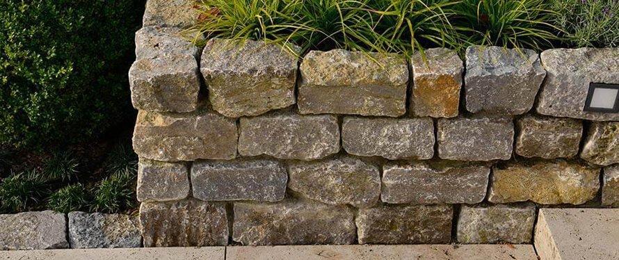 Trockenmauer mit Pflanzen1