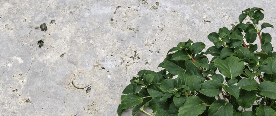 Farbe und Maserung von Natursteinen
