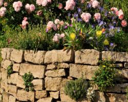 Super Natursteinmauer/Gartenmauer selber bauen & Steine verfugen | Ratgeber DR78